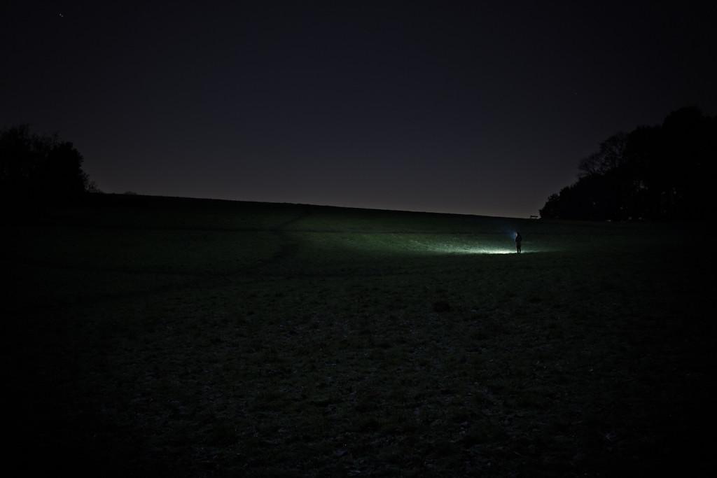 Untitled (Dog Walking, Parliament Hill)