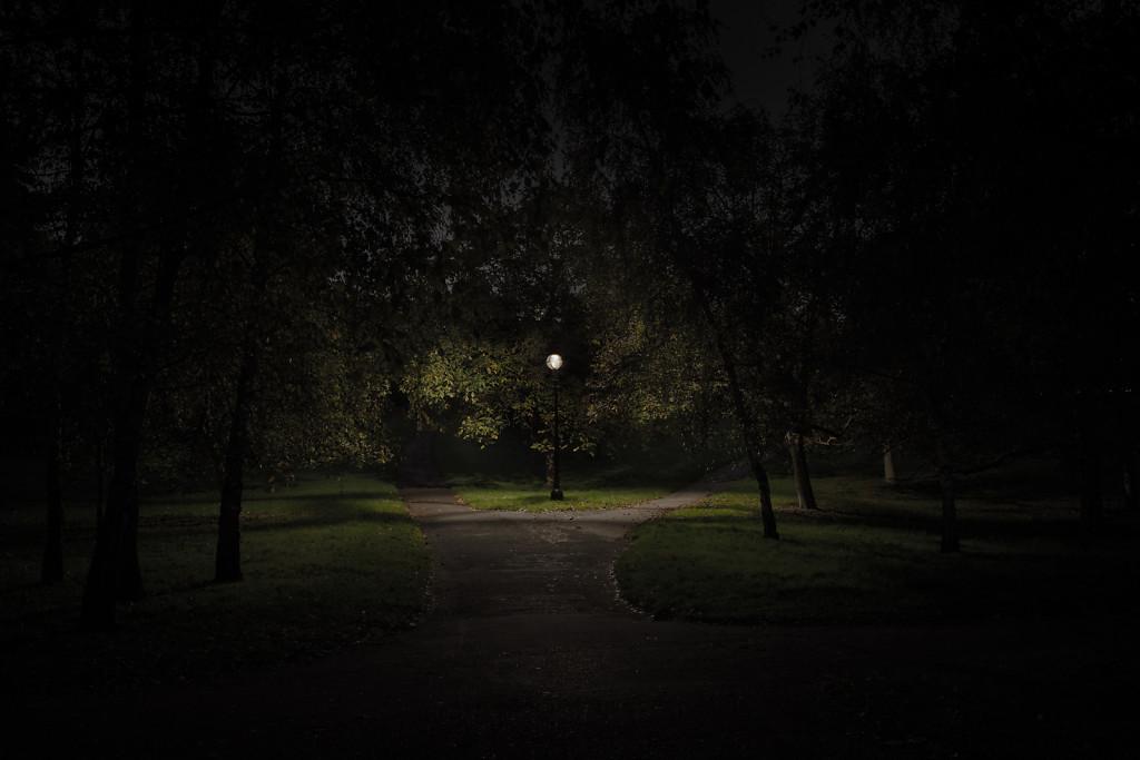 Untitled (Hyde Park II, Westminster)