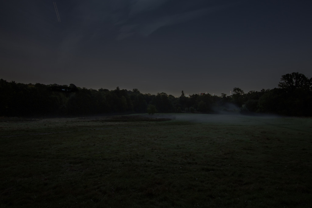 Untitled (South Meadow, Hampstead Heath)
