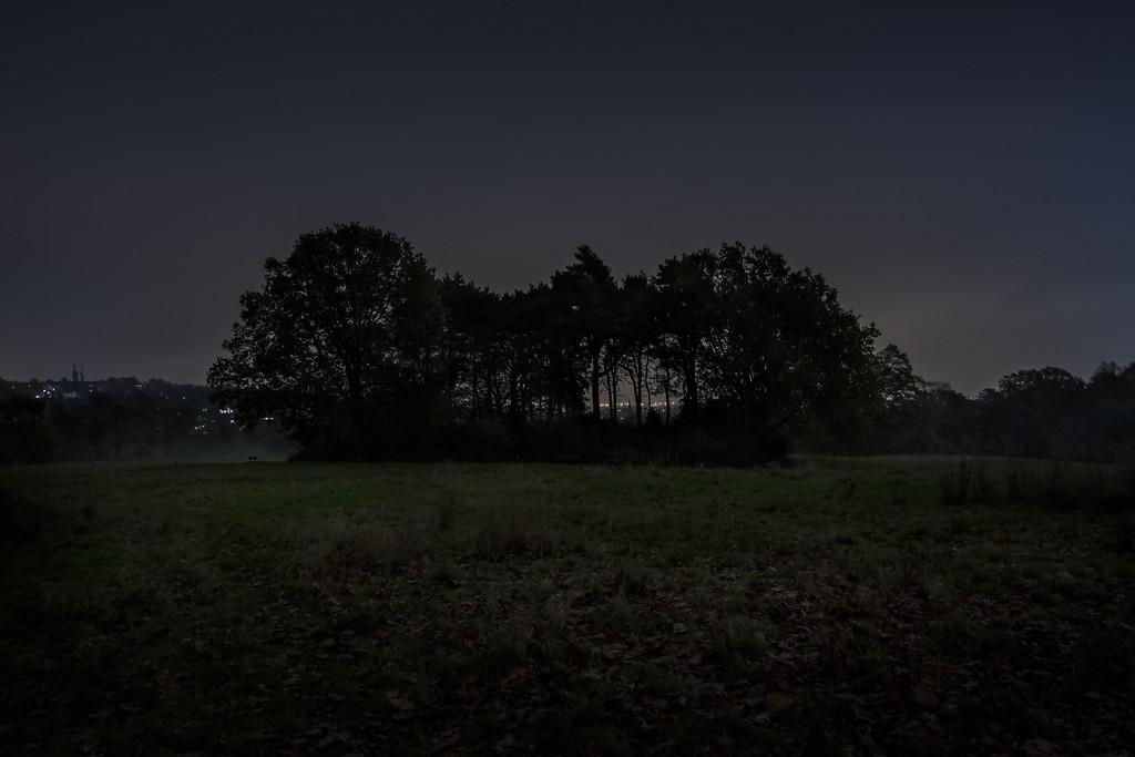 Untitled (Tumulus, Hampstead Heath)